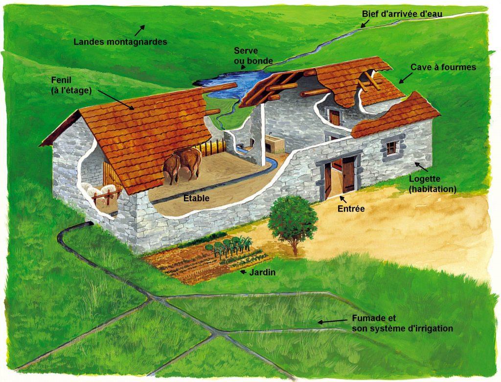 Schéma d'organisation de la jasserie (Dessin : GROSSON, 2001)